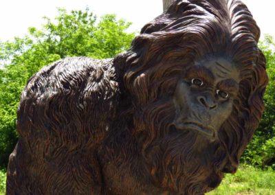 bigfoot-southern-il-shawnee-forest-gallery