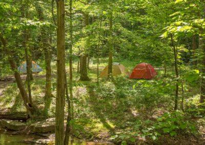 camping-jackson-falls-gallery